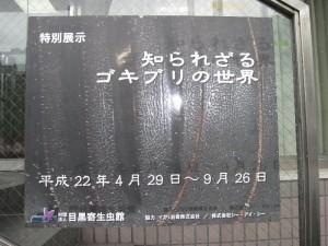 目黒寄生虫館「特別展」