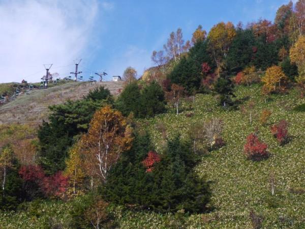 志賀草津道路 「前山スキー場付近」 (G1 NFD24mm)