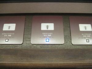 『オオシマゼミ』ボタン