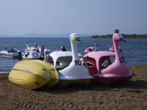 「猪苗代湖のスワンボート」 (G1 M.ZUIKO DIGITAL 14-42mm F3.5-5.6)