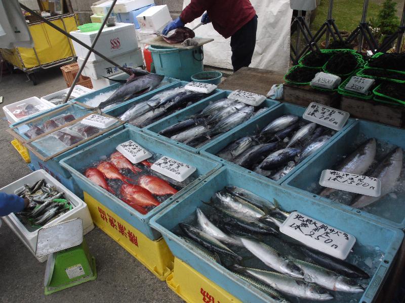 「勝浦朝市の魚」