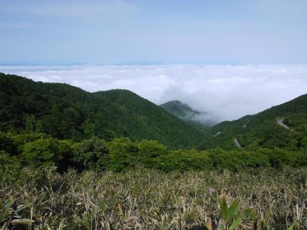 「雄国沼湿原の雲海」