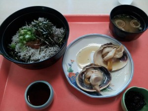 【伊良湖フェリー乗り場】 「みさき丼&焼大アサリ」