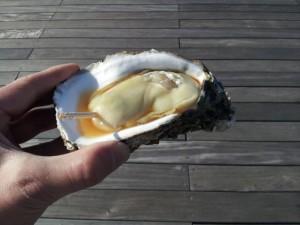 【福島県いわきラ・ラ・ミュウ】 岩ガキ