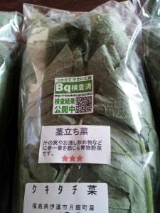 茎立ち菜(クキタチ菜)