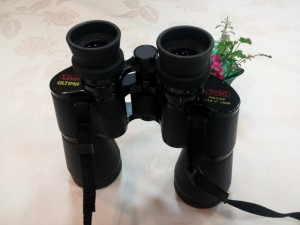 ビクセンの7倍x50mm双眼鏡