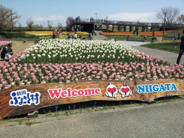 道の駅「新潟ふるさと村」