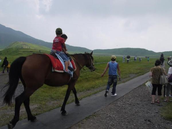 阿蘇山 「馬のりば」の馬