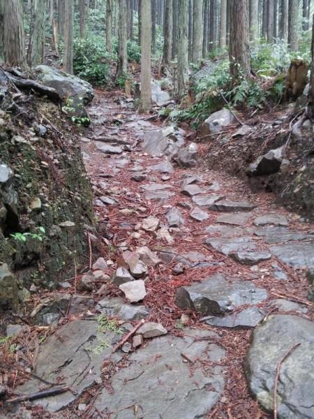 熊野古道 ツヅラト峠道