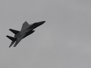 「F-15 飛行中」 (G1 NFD200mm)
