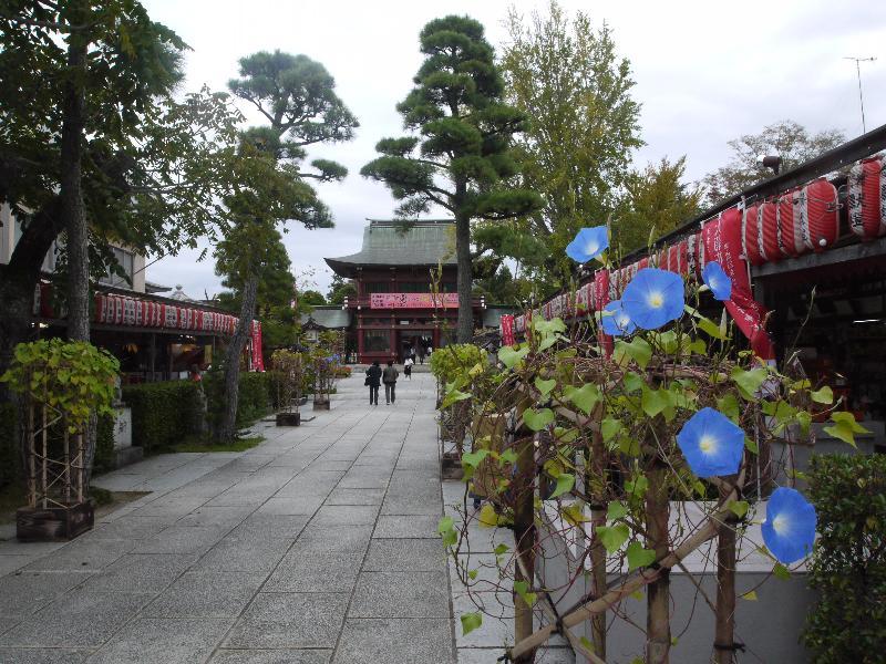 「笠間稲荷神社」 (G1 M.ZUIKO DIGITAL 14-42mm F3.5-5.6)