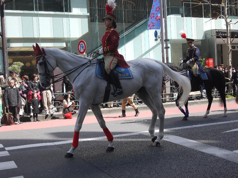 「交通安全パレード 騎馬隊」
