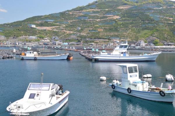 愛媛県 海には船と生け簀と漁港、山には果樹園