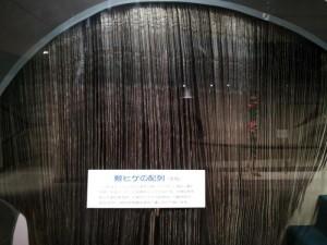 くじらの博物館 鯨ヒゲ