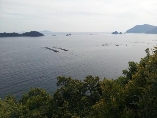 天嶬鼻灯台からの景色