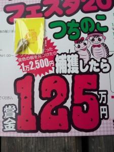 【岐阜県東白川村】 つちのこ館 つちのこを捕獲したら賞金125万円