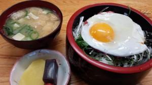 【北海道大樹町】 味の龍月 「牛とろ丼」