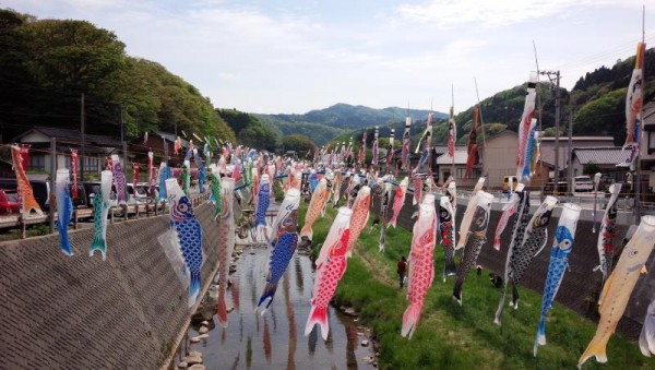 【石川県珠洲市】 大谷川鯉のぼりフェスティバル